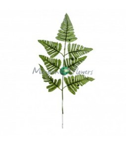 FERN SPRAY H.55 CM