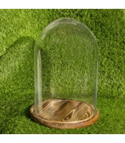 GLASS COVER WITH WOODEN BASE D23X35 PZ.1
