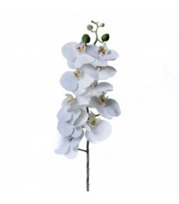 REAL TOUCH PHALENOPSIS W 10 FLRS 4 BUDS WHITE PZ. 1 *12 96*