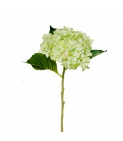 HYDRANGEA SPRAY W 3 LVS LT GREEN PZ.1 **12 144**