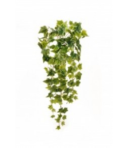 IVY HANGING BUSH W 144 REAL TOUCH L VARIEGATED 02 144