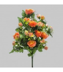 FRONTALE ROSE GYPSO PEACH