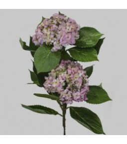 HYDRANGEA NATURAL LOOK X2 LT PINK