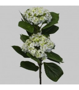 HYDRANGEA NATURAL LOOK X2 WHITE