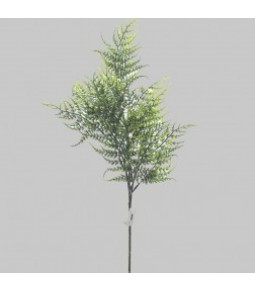 WILD FERN SPRAY X3 FROSTED H.62CM